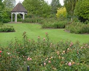 Hamilton Garden