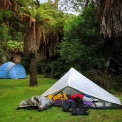 Pelorus Bridge Camping ground