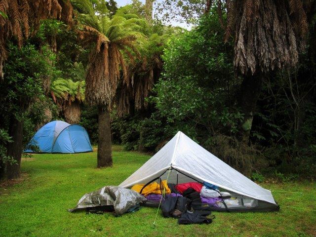Pelorus_Bridge_Camping_ground