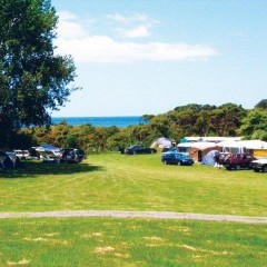 Waikawau Bay Camping grounds