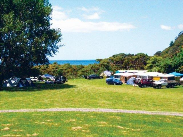 Waikawau Bay Camping grounds