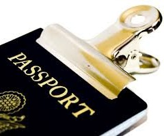New Zealand Working Holiday Visa